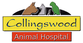 Collingswood Animal Hospital